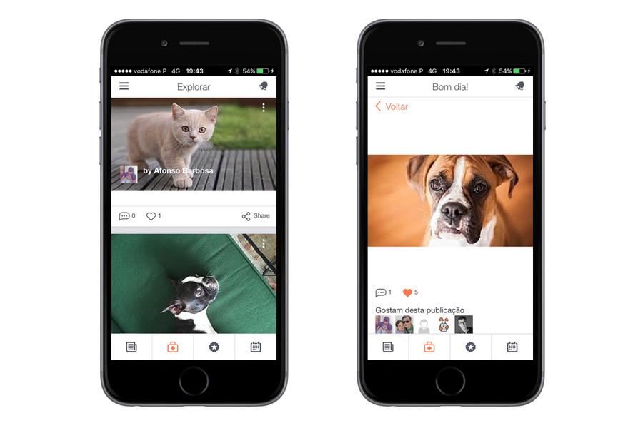 App iPhone – BuddyVet